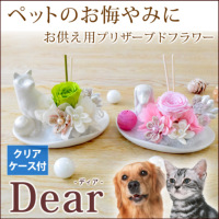 『Dear - ディア -』